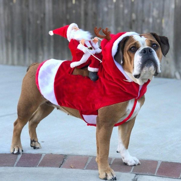 Christmas Doggo - Santa Claus Pet Costume