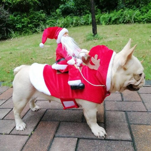Christmas Doggo - Santa Claus Pet Costume