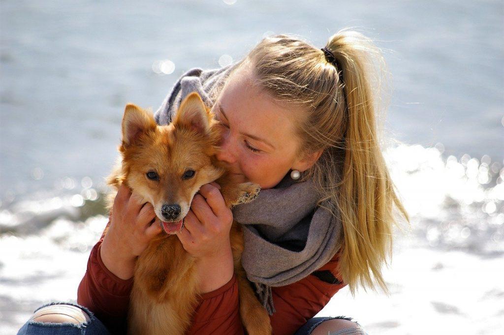 Woman, Dog, Tip, Affinity, Friend, Relationship, Joy