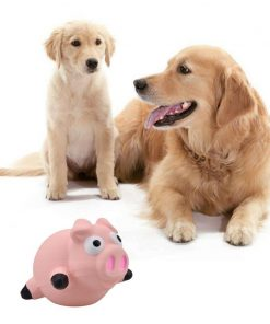 Dog Molar Latex Toy